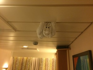 Towel Monkey suspended from the ceiling!